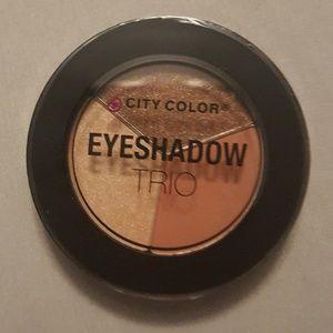 City Color Eyeshadow Falling Leaves